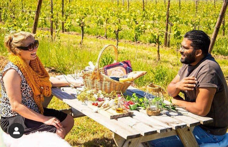 Picknick In De Wijngaard Bij Betuws Wijndomein